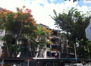 Teluk Bahang Street View