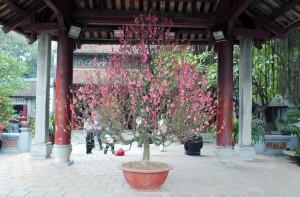 Hoan Kiem Temple