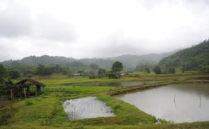Rainy Vietnam Landscape Between Hue and Hoi An
