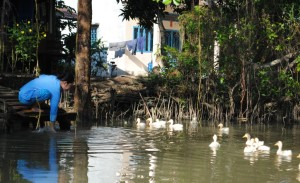 Can Tho Riverside Life Mekong Delta