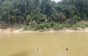 Taman Negara River Swimming