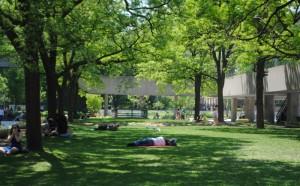 Toronto City Park